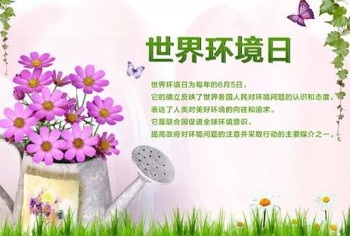 6.5世界环境日:美丽中国 我是行动者